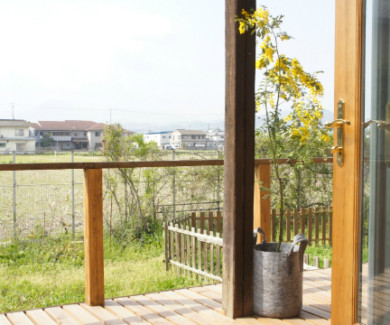ミモザの花と植木鉢